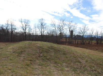 6-View from Top of Berm-Eastern Lot Line