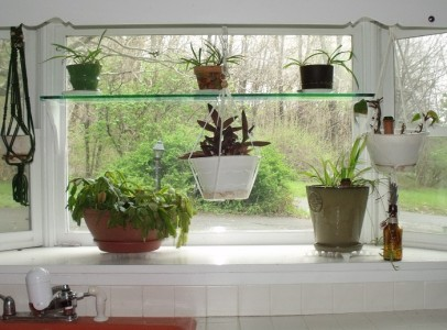 kitchen garden window-cropped