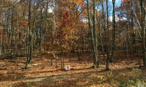 Stone Gate at Copake Lake – Lot with Nicest House Site